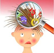Педикулез у детей - причины, симптомы,чем лечить, какими препаратами,средствами.